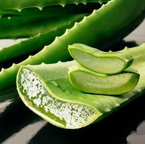AKCIJA! EC TOOTHPASTE WITH ALOE VERA Dabīga zobu pasta ar Aloe vera, 75ml